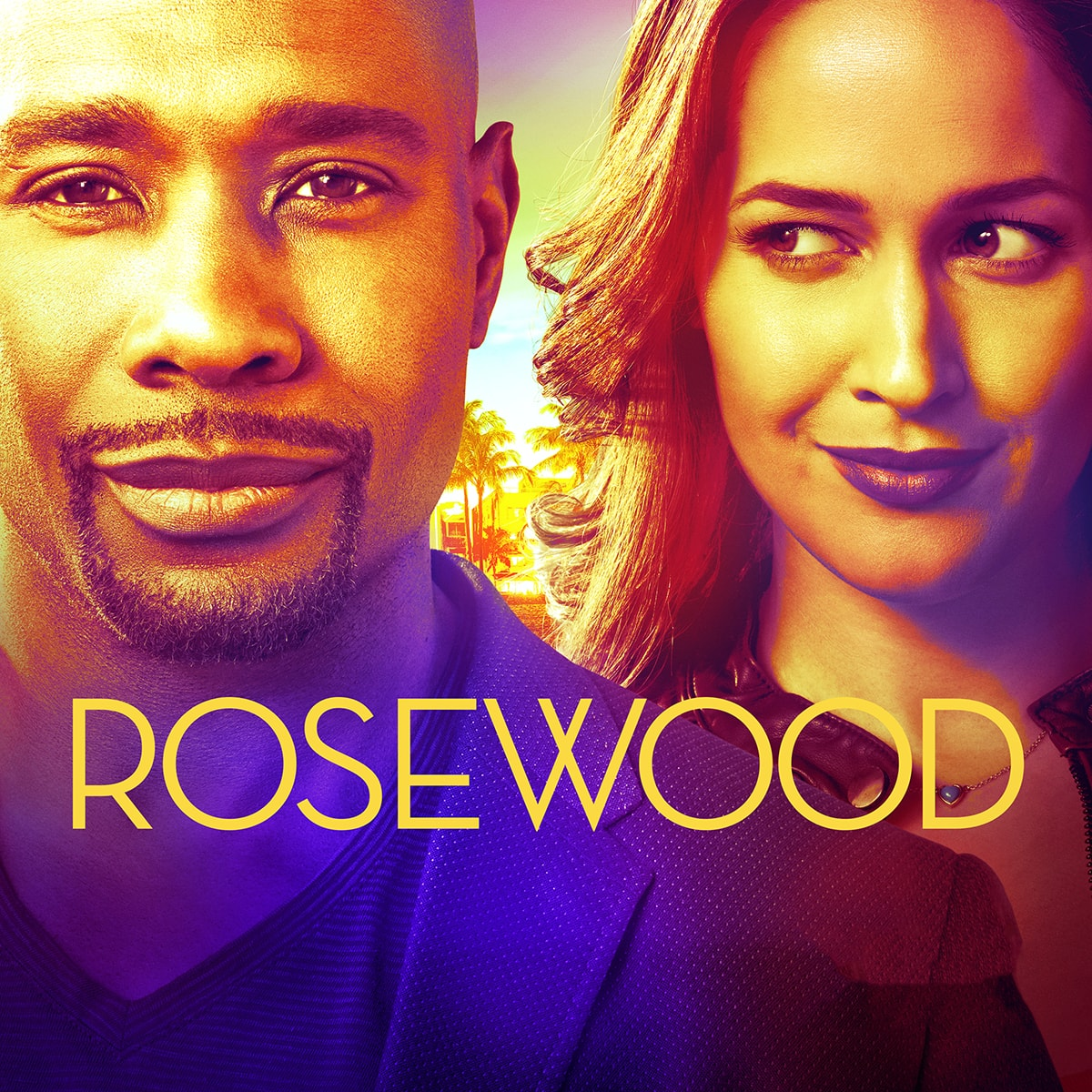 Rosewood Tv Show ~ Rosewood fox promos television